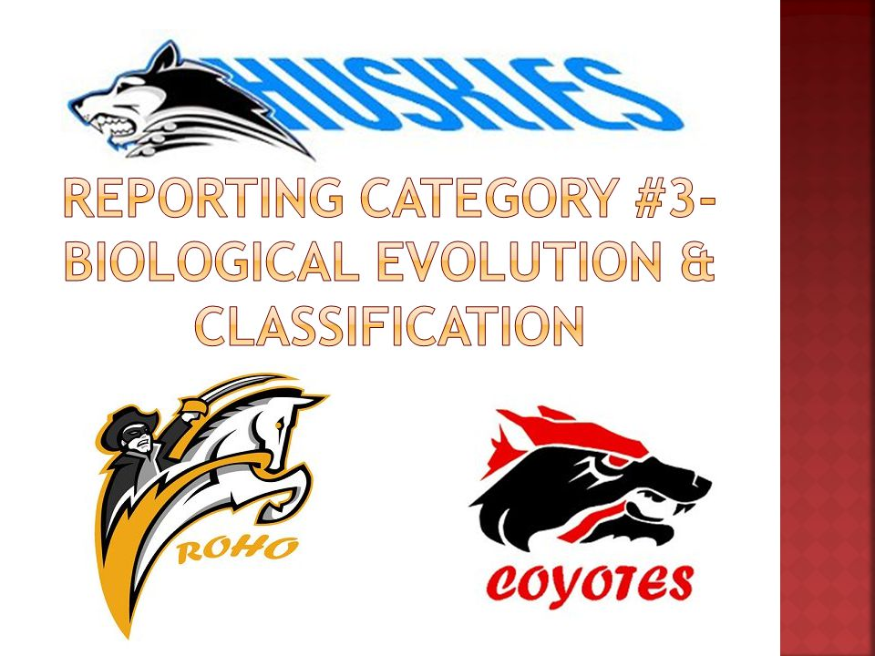 Reporting category #3- Biological Evolution & Classification