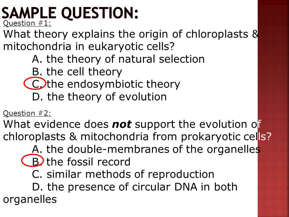 Sample question: Question #1: What theory explains the origin of chloroplasts & mitochondria in eukaryotic cells
