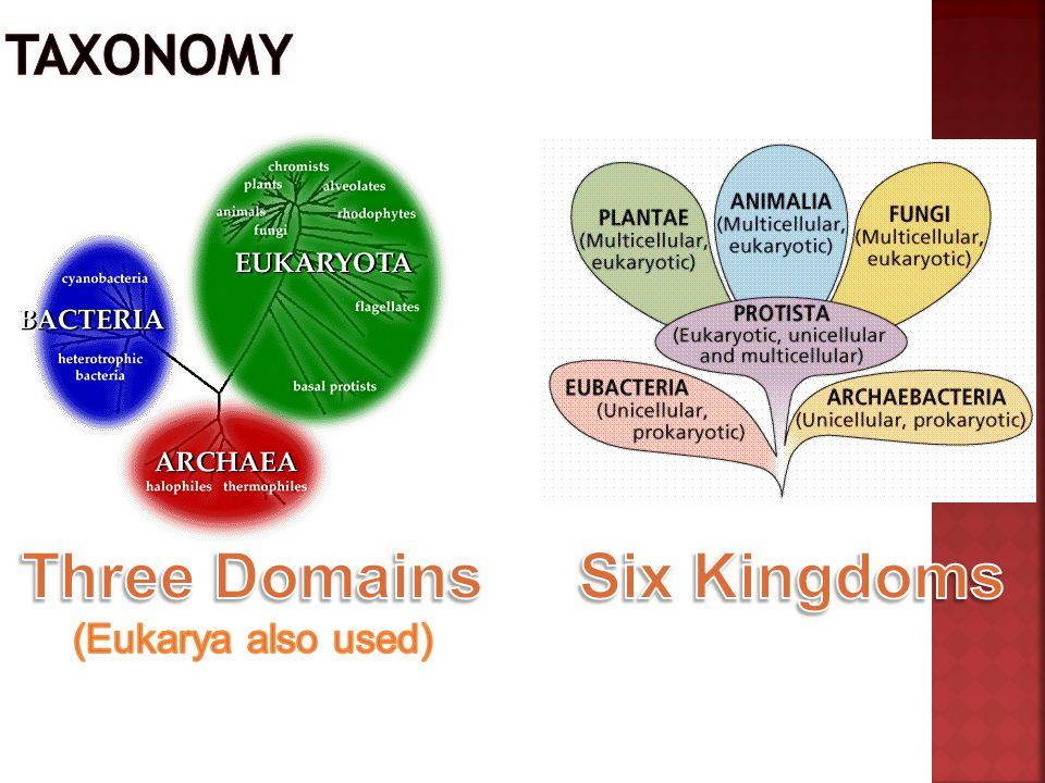 Three Domains (Eukarya also used)