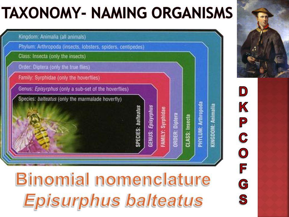 Taxonomy- naming organisms