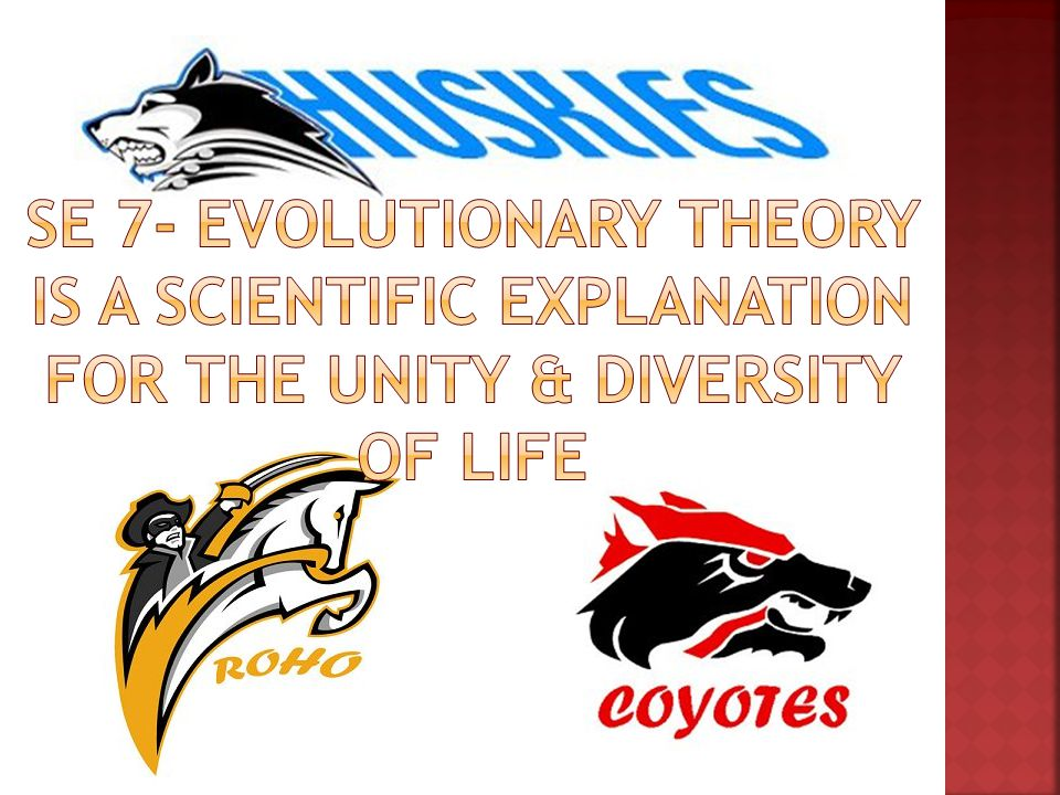 SE 7- evolutionary theory is a scientific explanation for the unity & diversity of life