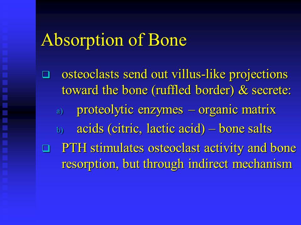 Absorption of Bone osteoclasts send out villus-like projections toward the bone (ruffled border) & secrete: