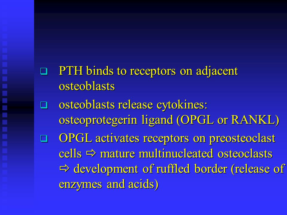 PTH binds to receptors on adjacent osteoblasts