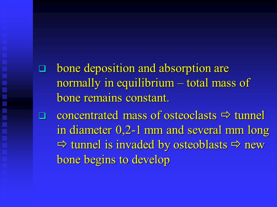 bone deposition and absorption are normally in equilibrium – total mass of bone remains constant.