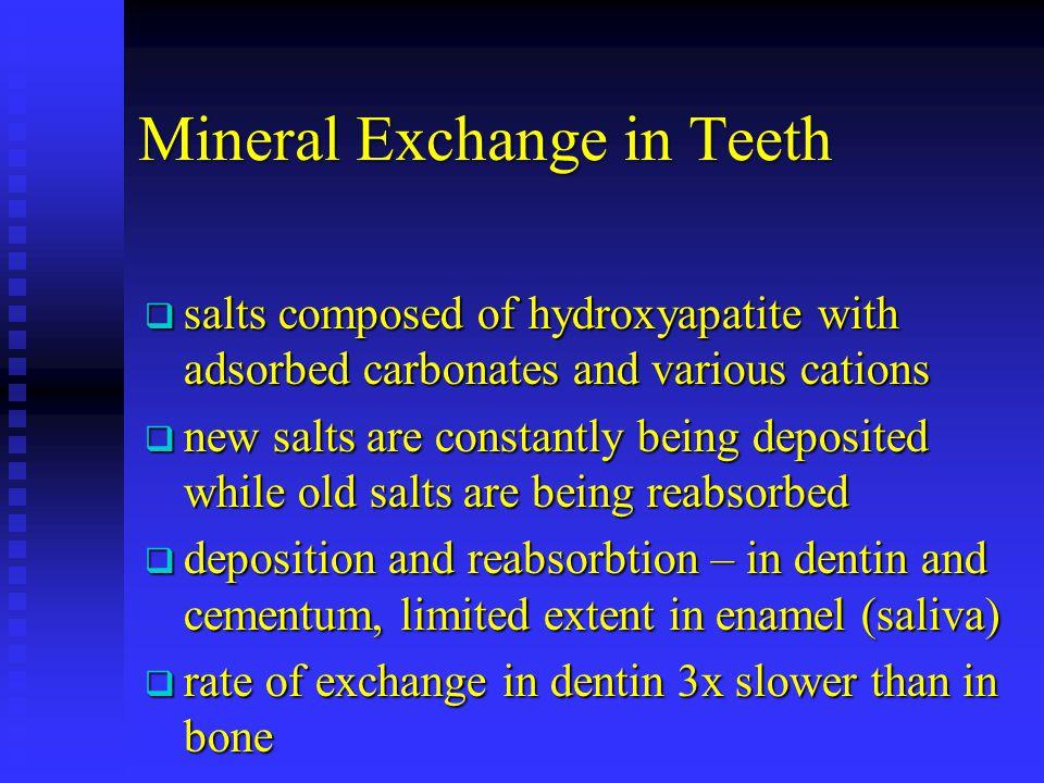 Mineral Exchange in Teeth