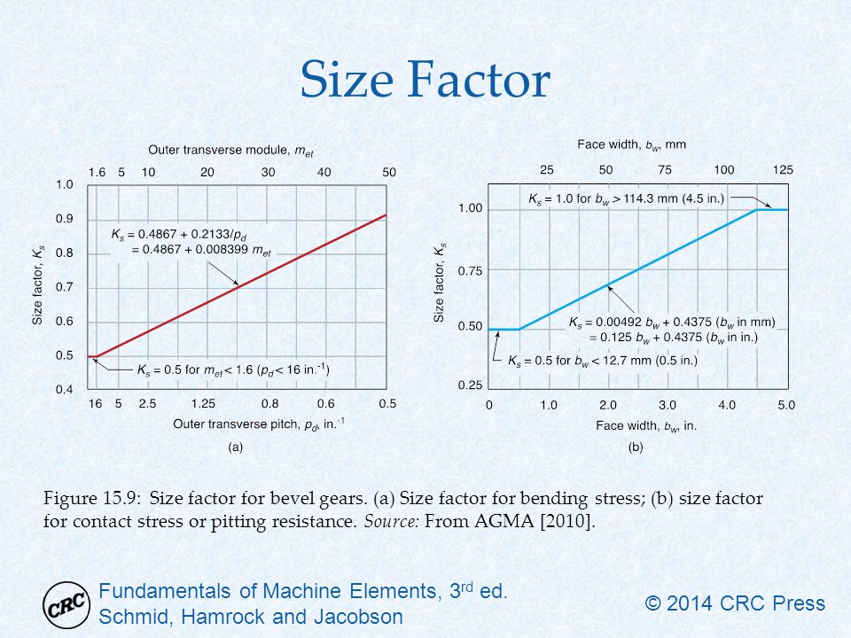 Size Factor