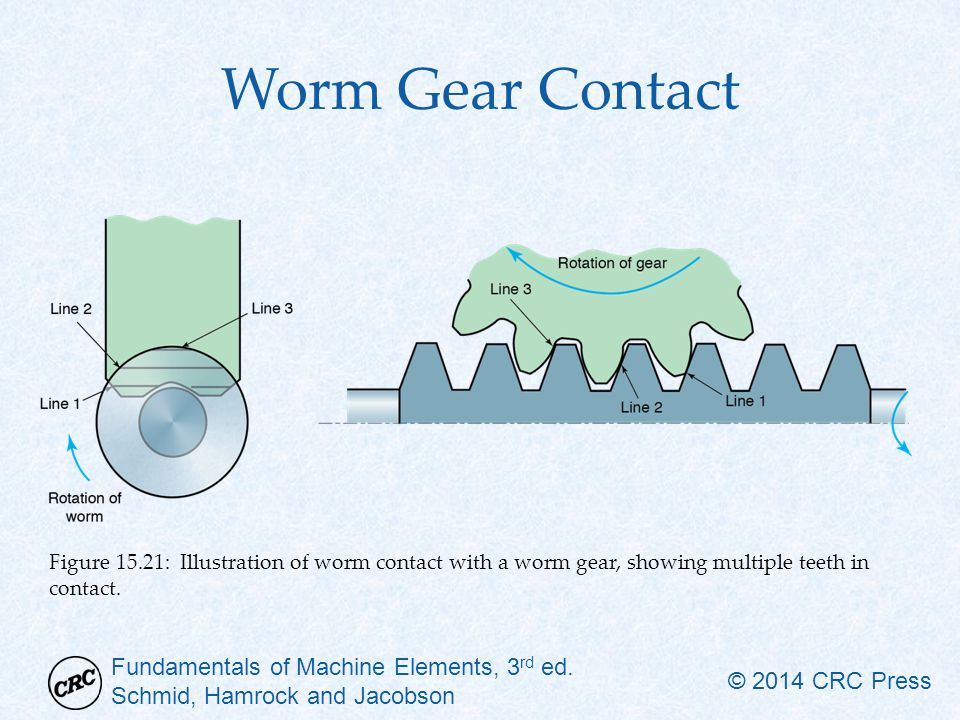 Worm Gear Contact Figure 15.21: Illustration of worm contact with a worm gear, showing multiple teeth in contact.