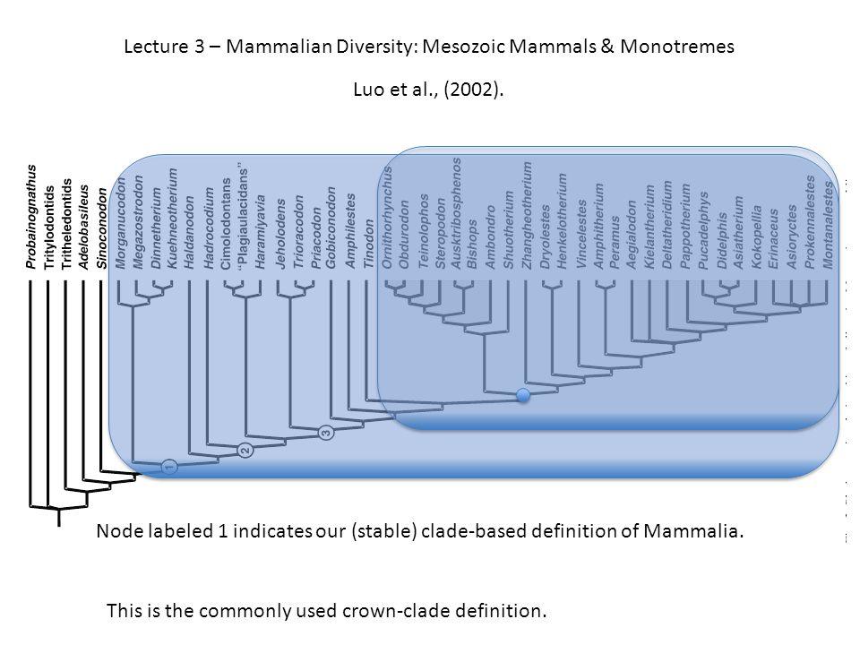 Lecture 3 – Mammalian Diversity: Mesozoic Mammals & Monotremes