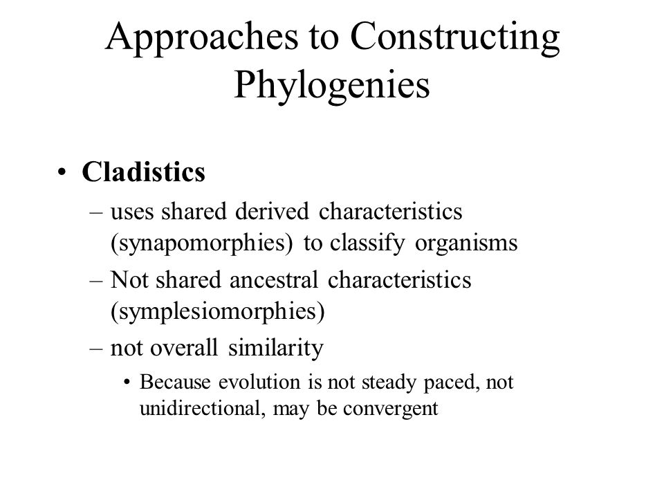 Approaches to Constructing Phylogenies