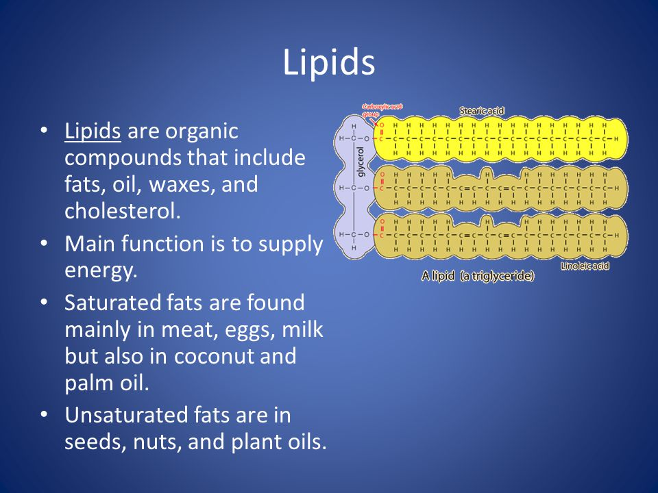 Lipids Lipids are organic compounds that include fats, oil, waxes, and cholesterol. Main function is to supply energy.
