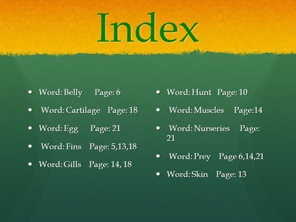 Index Word: Belly Page: 6 Word: Cartilage Page: 18 Word: Egg Page: 21