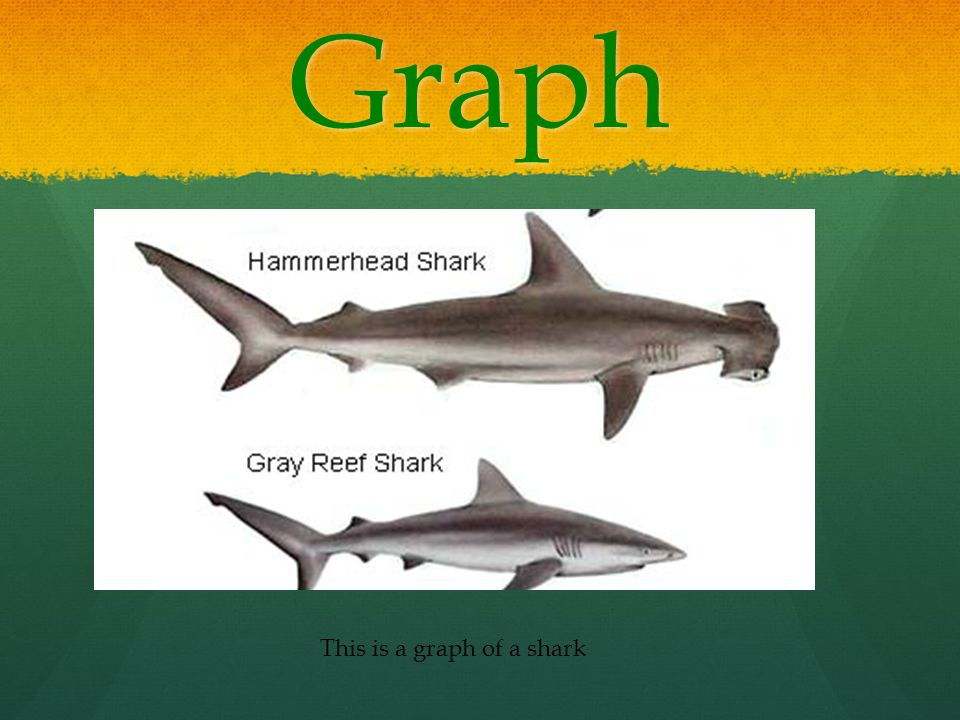 Graph This is a graph of a shark