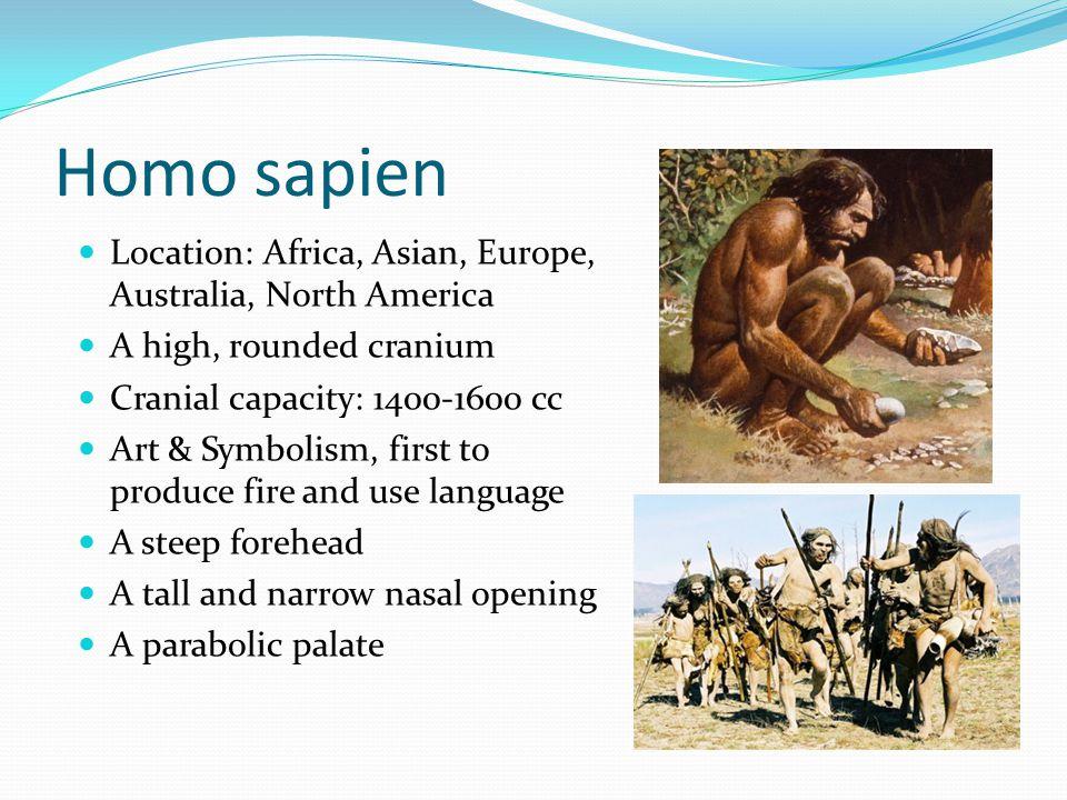 Homo sapien Location: Africa, Asian, Europe, Australia, North America