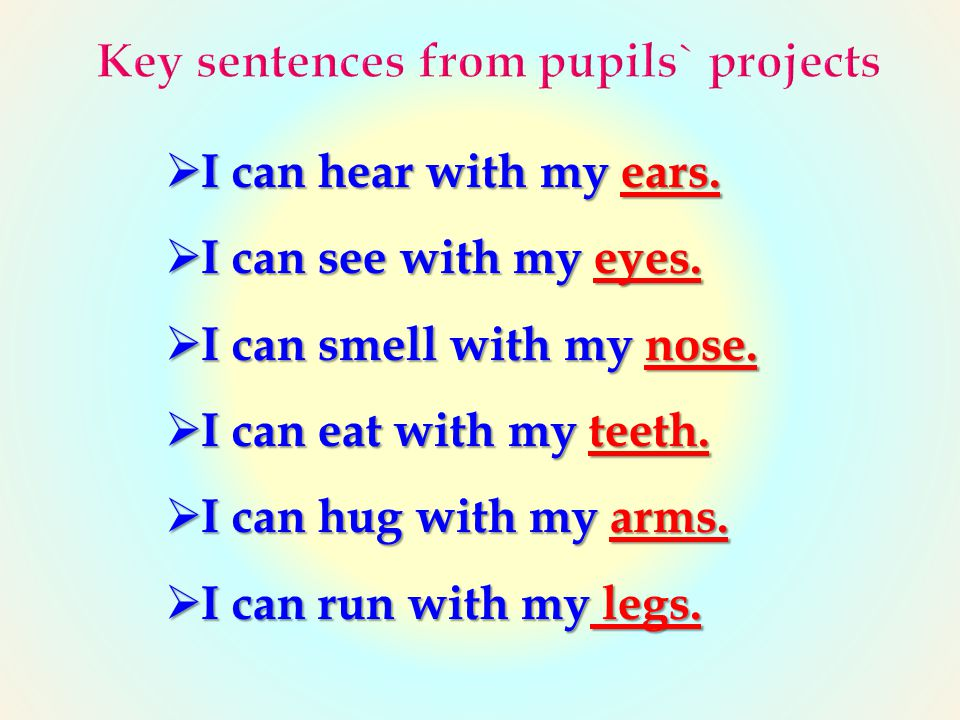 Key sentences from pupils` projects