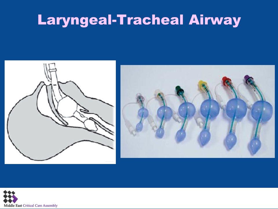 Laryngeal-Tracheal Airway