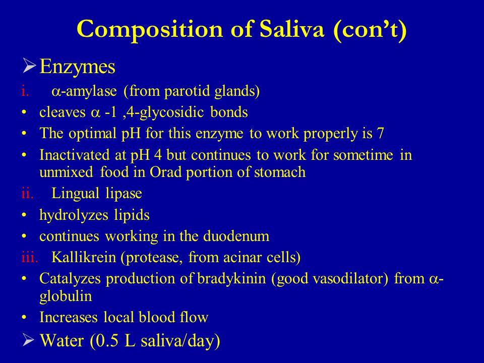 Composition of Saliva (con't)