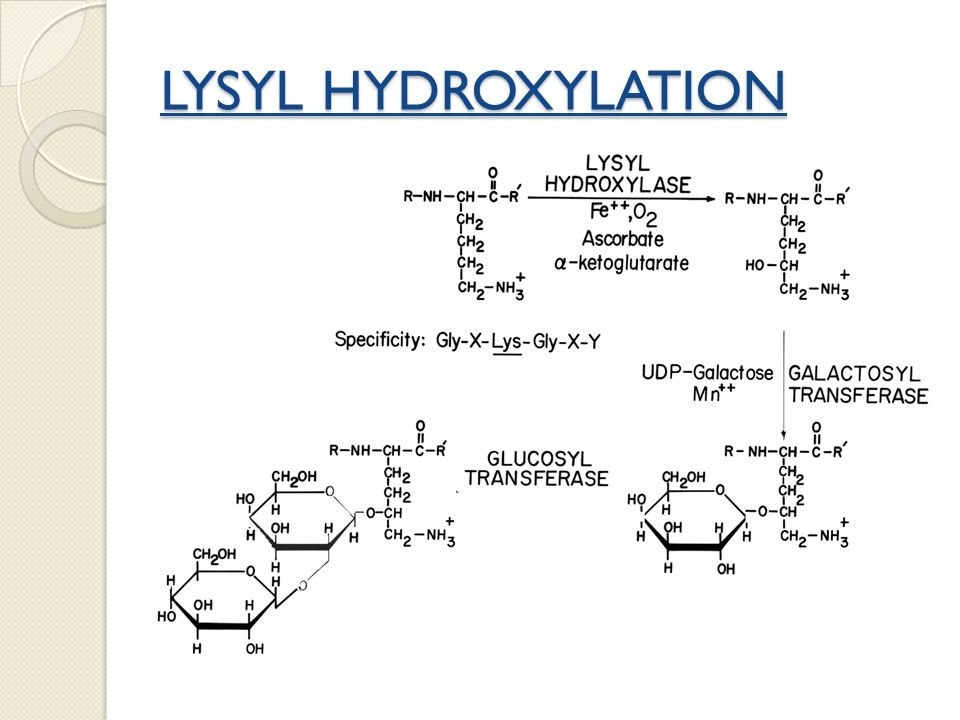 LYSYL HYDROXYLATION