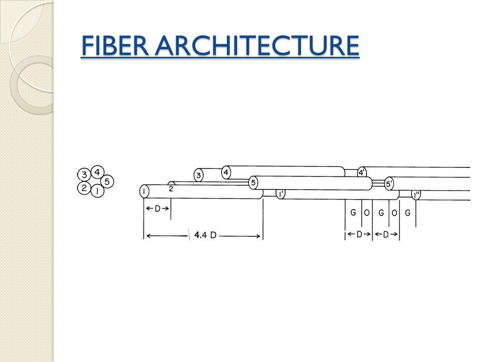 FIBER ARCHITECTURE