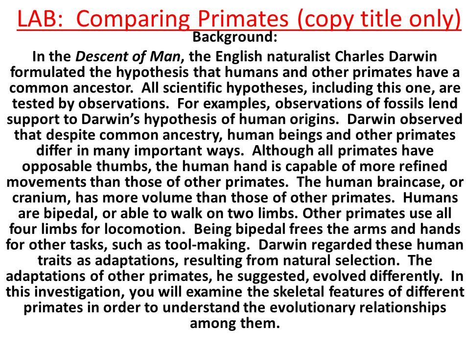 LAB: Comparing Primates (copy title only)