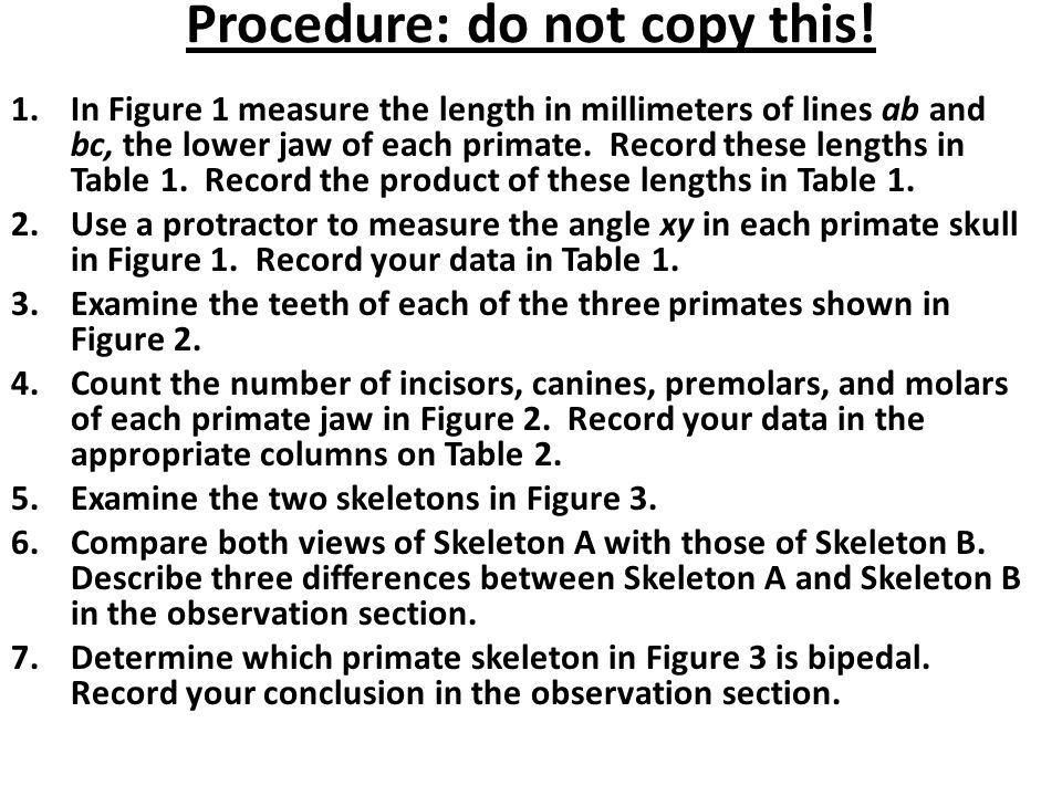 Procedure: do not copy this!