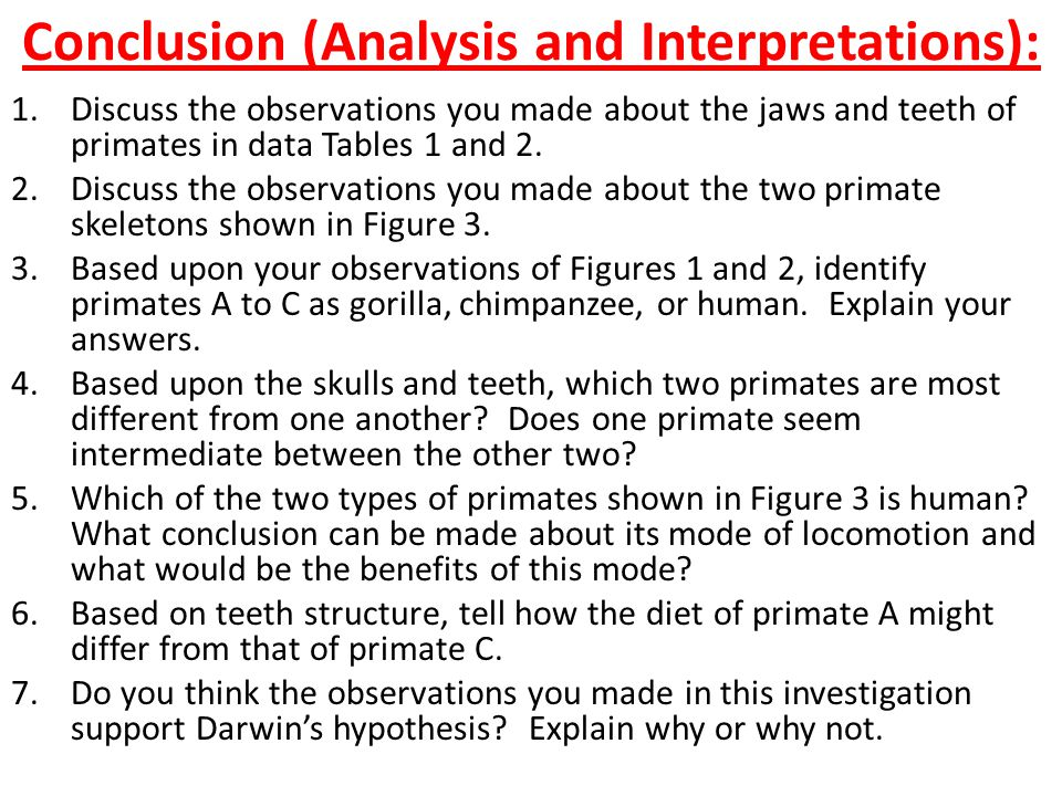 Conclusion (Analysis and Interpretations):