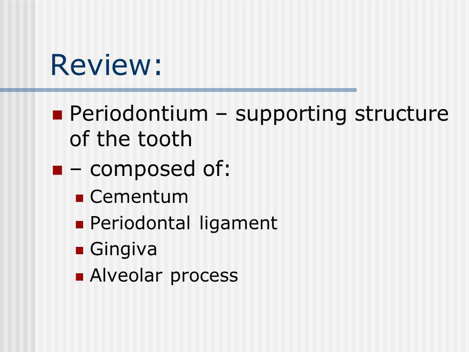 Review: Periodontium – supporting structure of the tooth