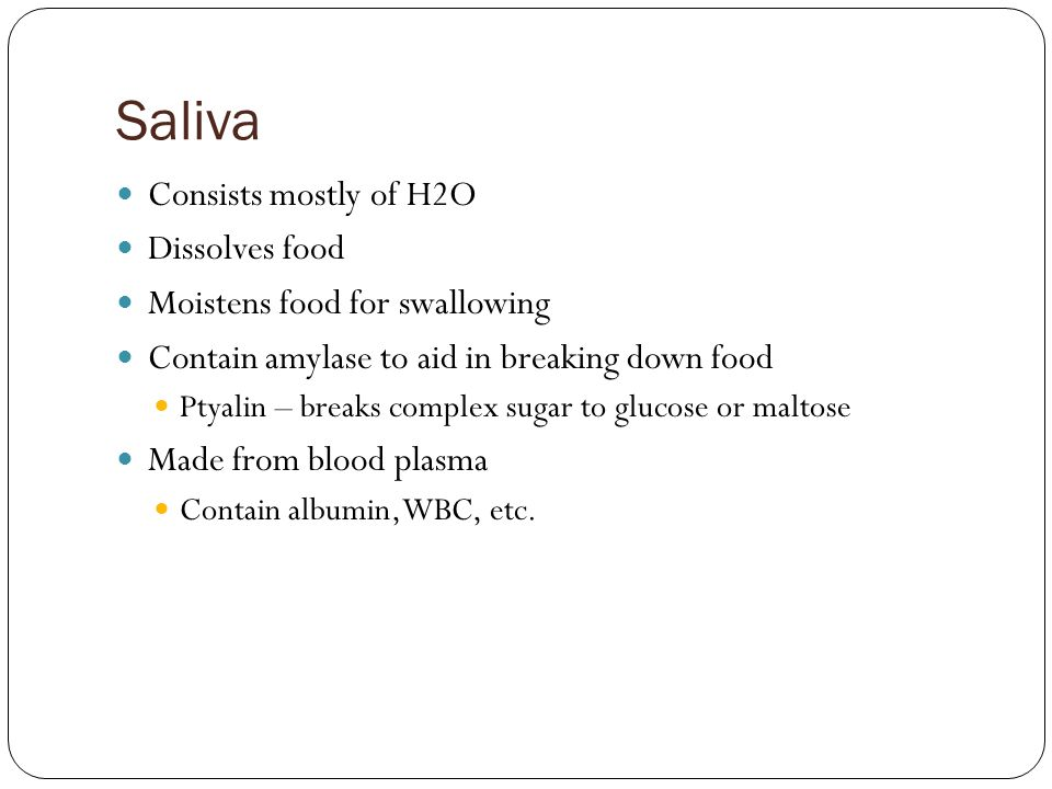 Saliva Consists mostly of H2O Dissolves food