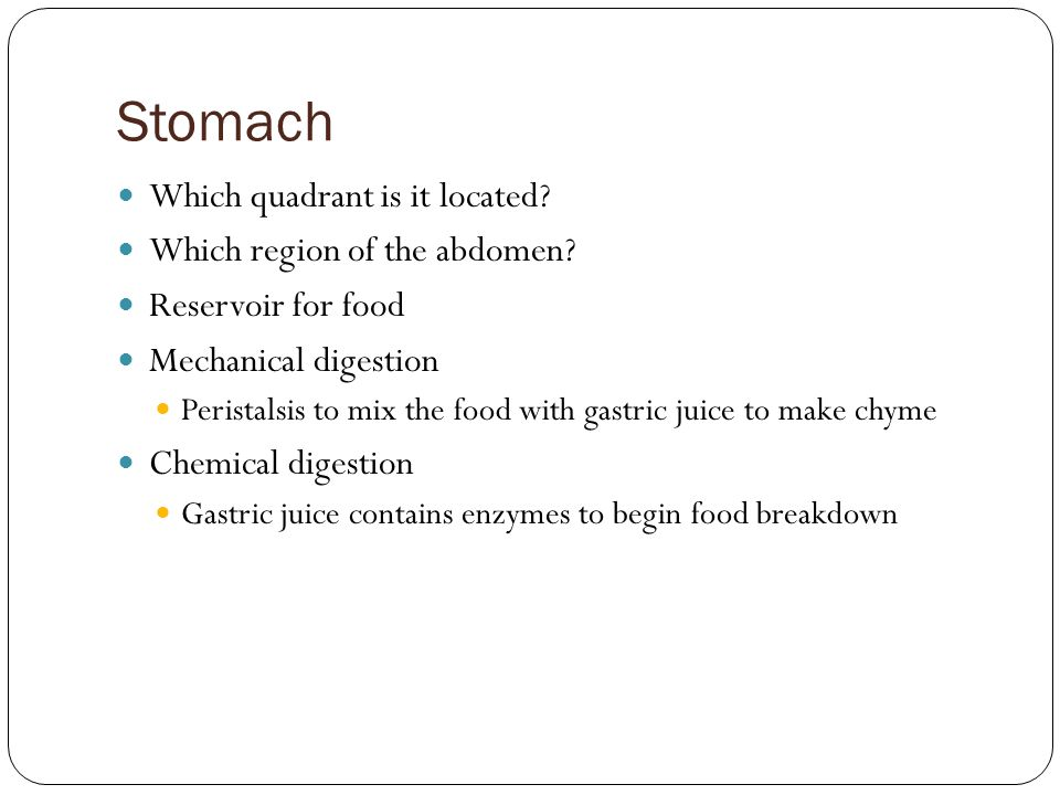 Stomach Which quadrant is it located Which region of the abdomen