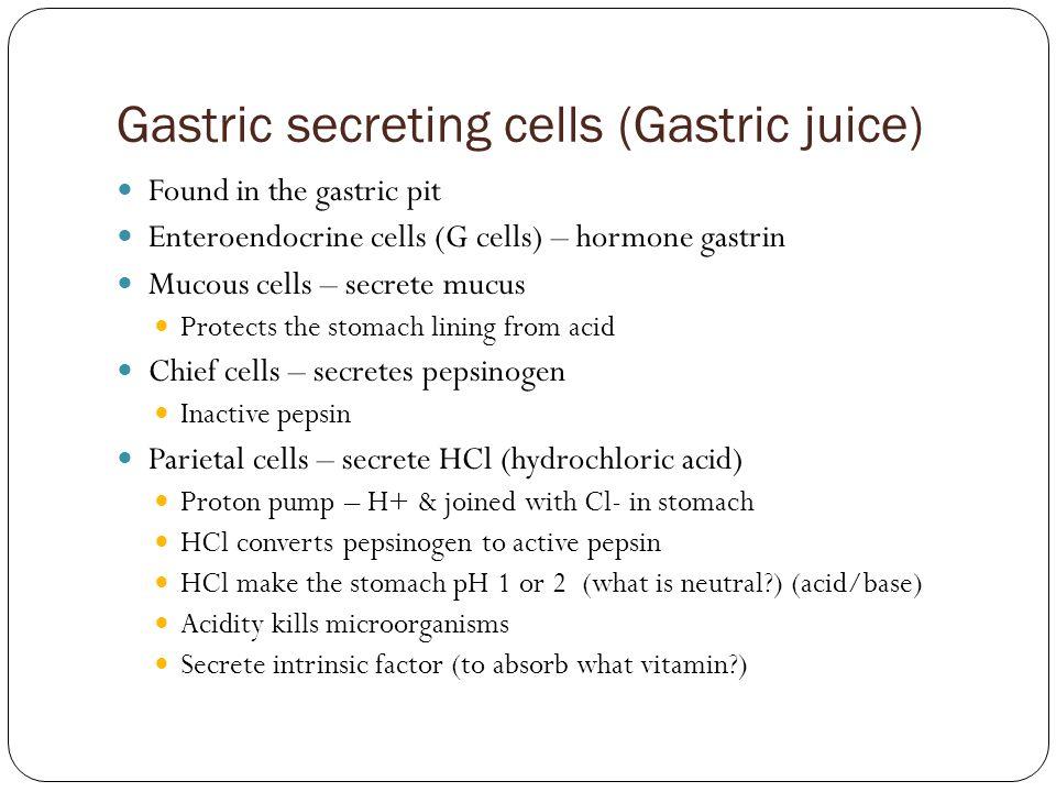 Gastric secreting cells (Gastric juice)