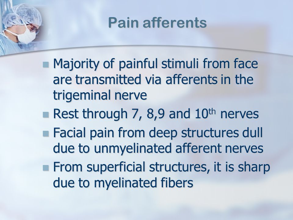 Pain afferents Majority of painful stimuli from face are transmitted via afferents in the trigeminal nerve.