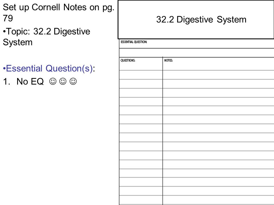 Set up Cornell Notes on pg. 79 Topic: 32.2 Digestive System