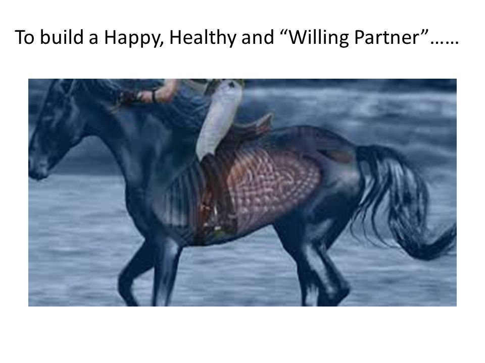 To build a Happy, Healthy and Willing Partner ……