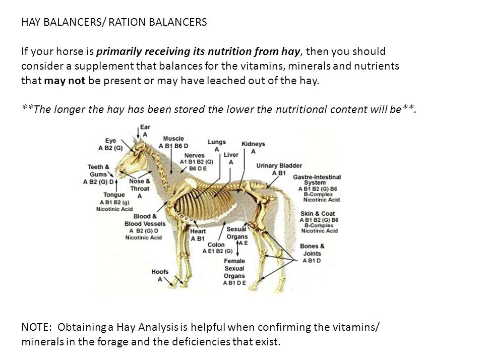 HAY BALANCERS/ RATION BALANCERS