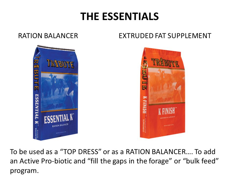 THE ESSENTIALS RATION BALANCER EXTRUDED FAT SUPPLEMENT