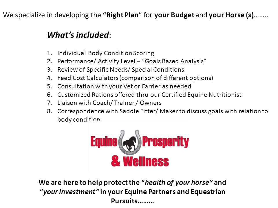 We specialize in developing the Right Plan for your Budget and your Horse (s)……..