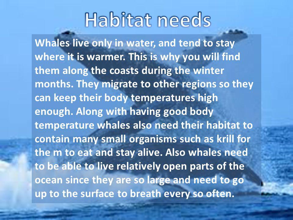 Habitat needs