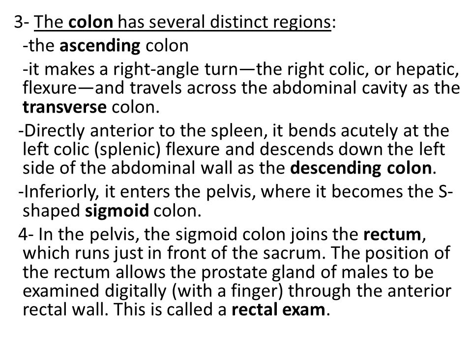 3- The colon has several distinct regions: -the ascending colon -it makes a right-angle turn—the right colic, or hepatic, flexure—and travels across the abdominal cavity as the transverse colon.