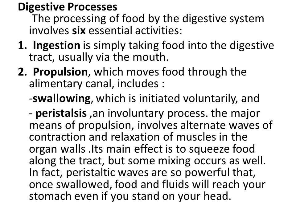 Digestive Processes The processing of food by the digestive system involves six essential activities: 1.