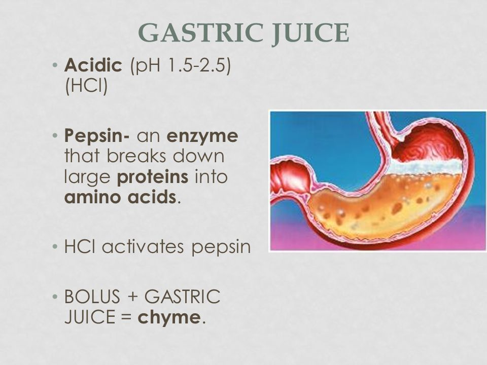 Gastric Juice Acidic (pH 1.5-2.5) (HCl)