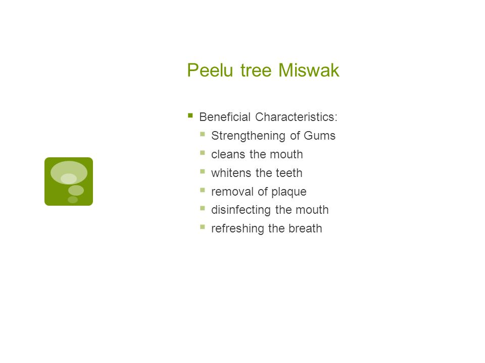 Peelu tree Miswak Beneficial Characteristics: Strengthening of Gums