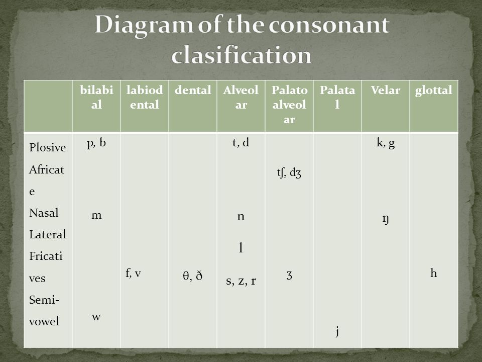 Diagram of the consonant clasification