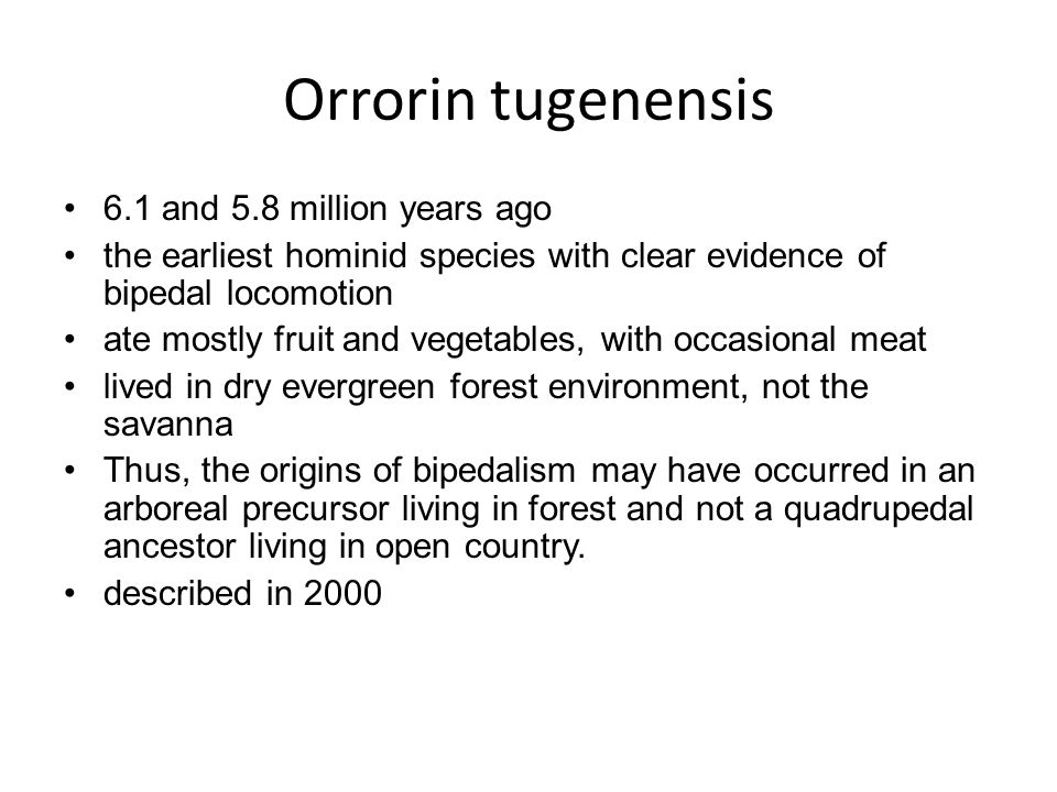 Orrorin tugenensis 6.1 and 5.8 million years ago