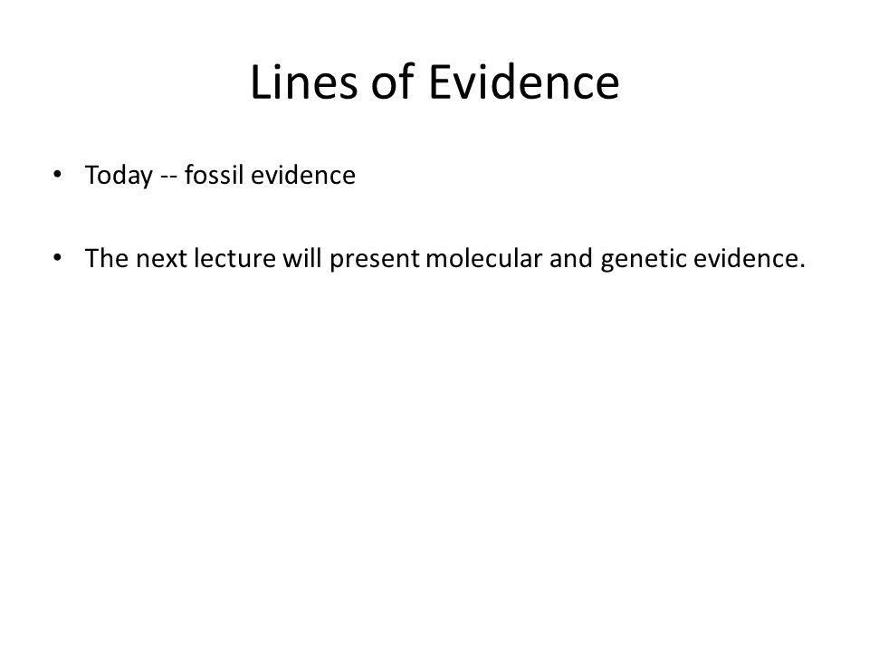 Lines of Evidence Today -- fossil evidence