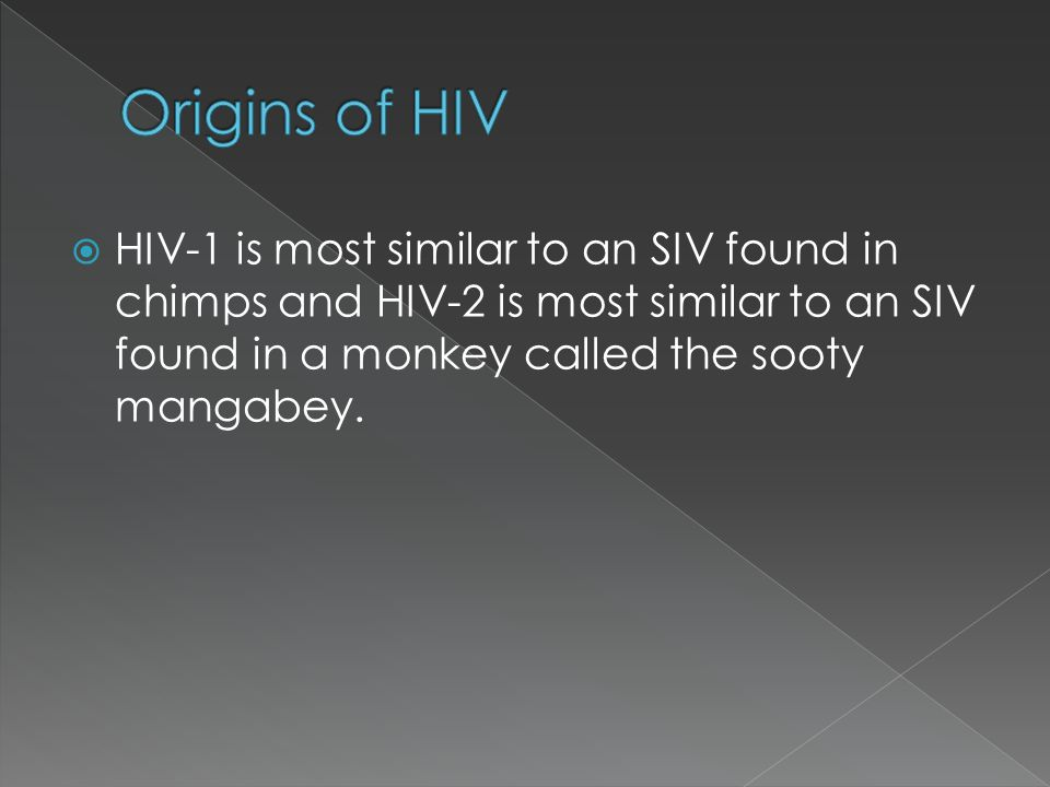 Origins of HIV HIV-1 is most similar to an SIV found in chimps and HIV-2 is most similar to an SIV found in a monkey called the sooty mangabey.