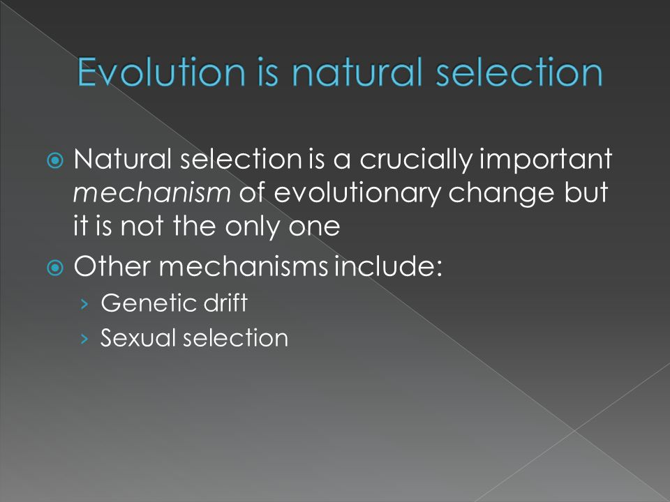 Evolution is natural selection