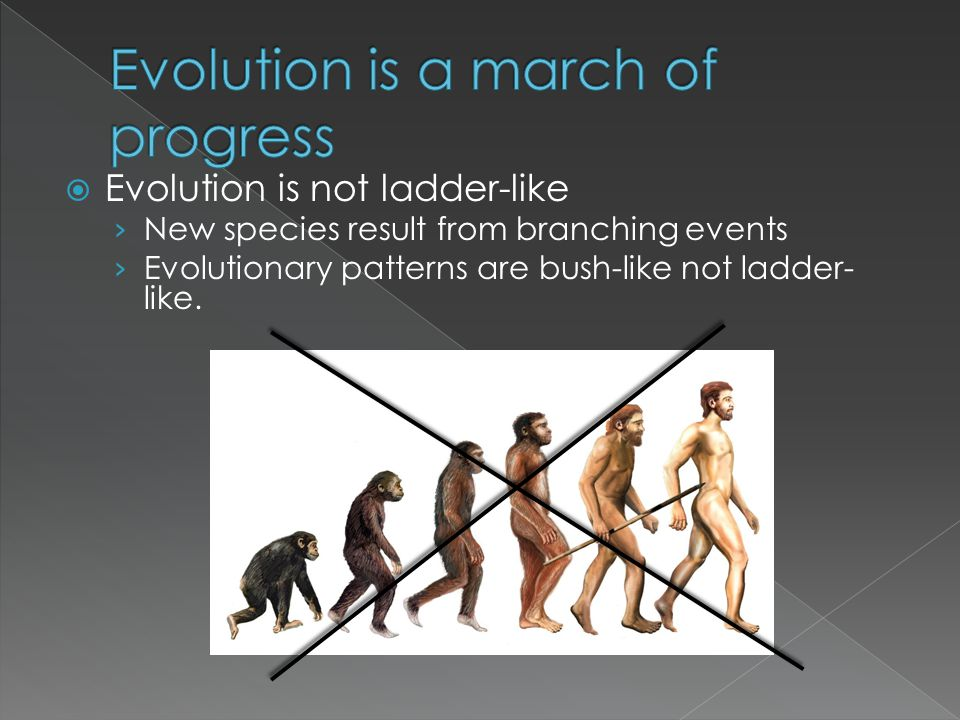 Evolution is a march of progress