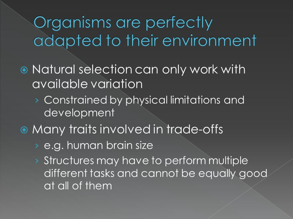 Organisms are perfectly adapted to their environment