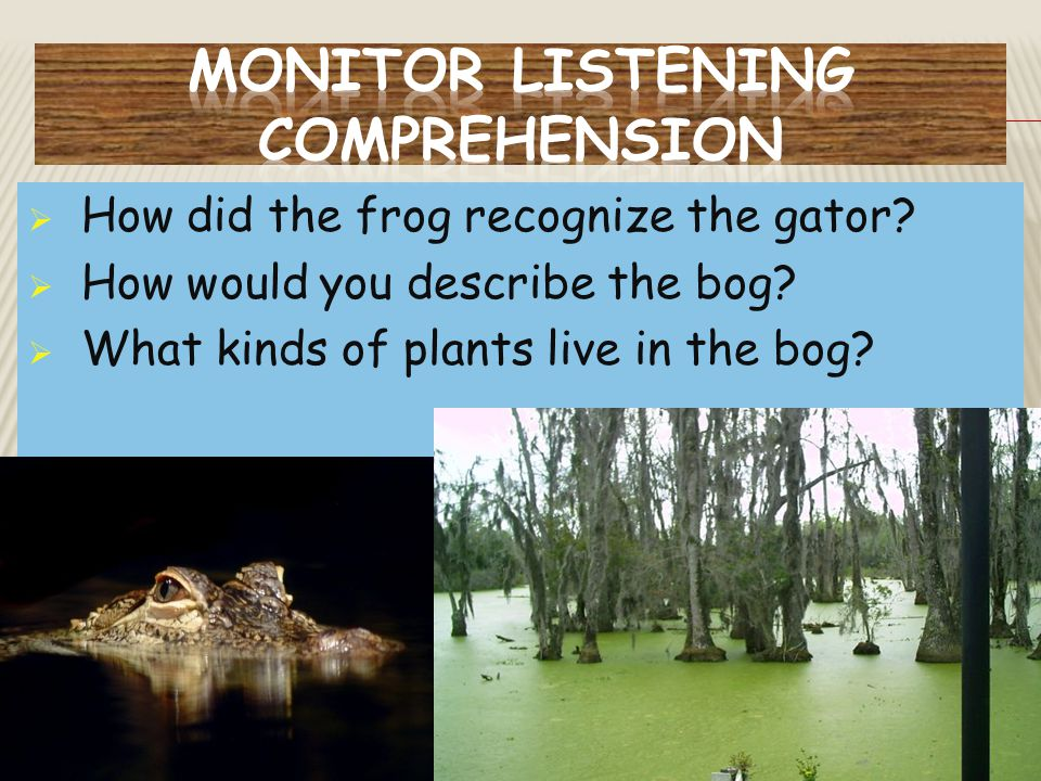 Monitor Listening comprehension