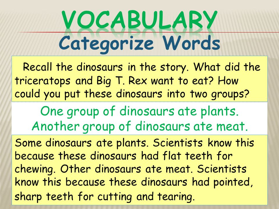 Vocabulary Categorize Words
