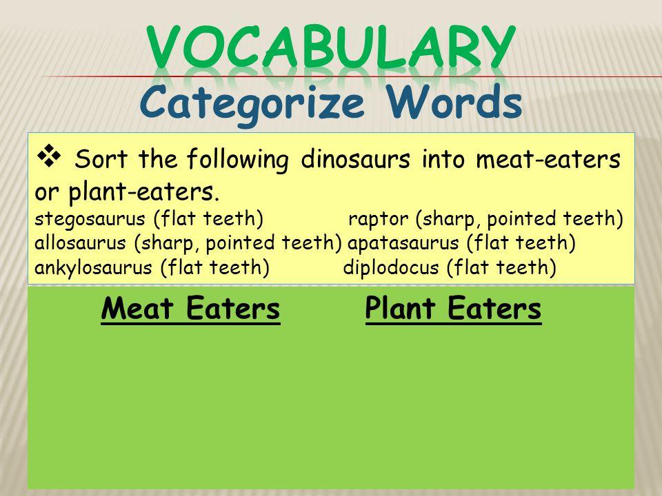 Vocabulary Categorize Words